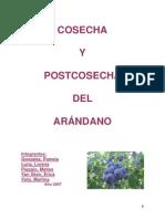 Cosecha y Poscosecha Del Arandano