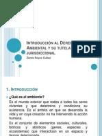 Introducción al Derecho Ambiental y su tutela jurisdiccional