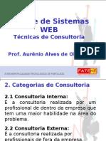 Aula 2 - Tipos de Consultoria