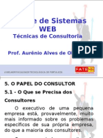 Aula 4 - Papel Do Consultor