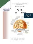 Qi Gong y Acupuntura Cerebral 2011
