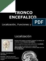 tronco encefalico