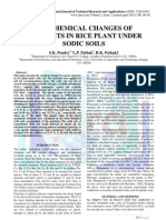 BIO-CHEMICAL CHANGES OF NUTRIENTS IN RICE PLANT UNDER SODIC SOILS