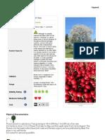 κερασια- ελληνικά δέντρα