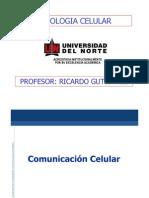 Comunicacion Celular 201030