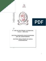 Programa Oficial Pato-i-2013 Ultimo