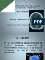 Tumores Cerebrales Presentacion Original.1