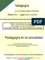 Sobre Pedagogia 2013
