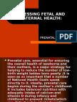 Assessing Fetal and Maternal Health