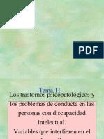 Tema 11 Trastornos Psicopatologicos