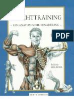 Anatomy of Bodybuilding 2