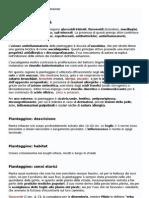 Piantaggine, proprietà e uso - Cure-Naturali.pdf