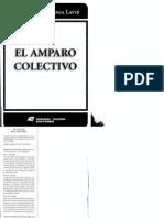El Amparo Colectivo - Quiroga Lavié