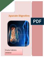 APARATO DIGESTIVO (desde esófago)