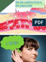 cap13 -  Migración de linfocitos