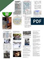 FEATI University, Civil Engineering Department Brochure 2002