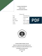 laporan4