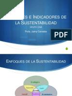 Enfoques e Indicadores de La Sustentabilidad