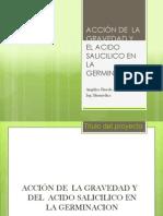 ACCIÓN DE  LA GRAVEDAD Y EL ACIDO SALICILICO