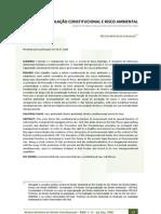 2008 - CARVALHO, Délton Winter. Regulação constitucional e risco ambiental..pdf
