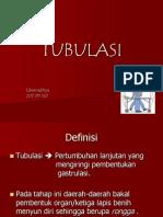 TUBULASI