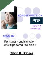 Non Disjunction