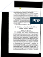 Lathyrism in Domestic Animals Spanish 1917