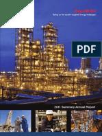 Raport Anual Exxon