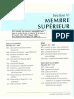 Anatomie - Netter - Membre Supérieur.pdf