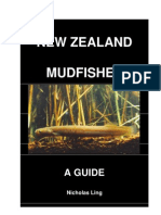 104608223 New Zealand Mudfish