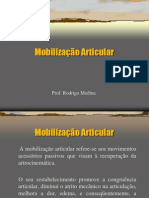 Aula 3 - Mobilização Articular
