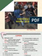 violentainmediulscolar_prezentareppt (1)