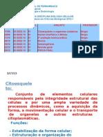 Citoesqueleto e Organelas Oxidativas