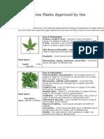 herbal.docx