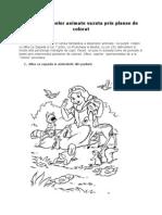 Personaje Din Desene Animate- Planse Pentru Colorat