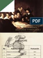 Anatomia y Fisiologia i