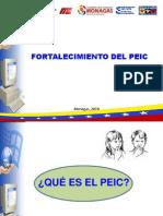 PEIC-2010