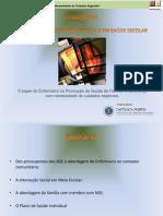Necessidades de Saúde Especiais em Saúde Escolar.pdf
