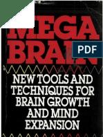 0 The Mega Brain