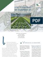 Cultivo Hidrop Nico
