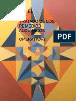 Tratado de Los Remedios Alquimicos Operativa2