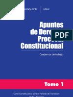 Apuntes de Derecho Procesal Constitucional, T1 (1)