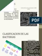 Bacterias y Virus