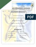 Informe Final Seminario Educacion Tecnologia Educativa