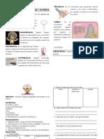 SESIÓN-PROP.PARTICULARES-MATERIA-5º.doc
