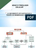 MOVIMIENTO DE SUSTANCIAS A TRAVÉS DE MEMBRANAS CELULARES