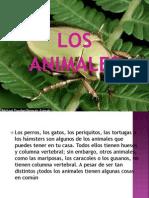 LOS ANIMALES.pptx