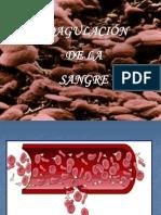Coagulacin de La Sangre4505