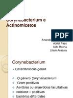 Corynebacterium e Actinomicetos