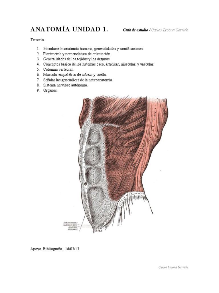 Anatomía Unidad 1. Guía de estudio Carlos Lecona Garrido pdf
